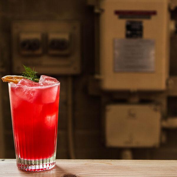 Aalborg Dild Cocktail